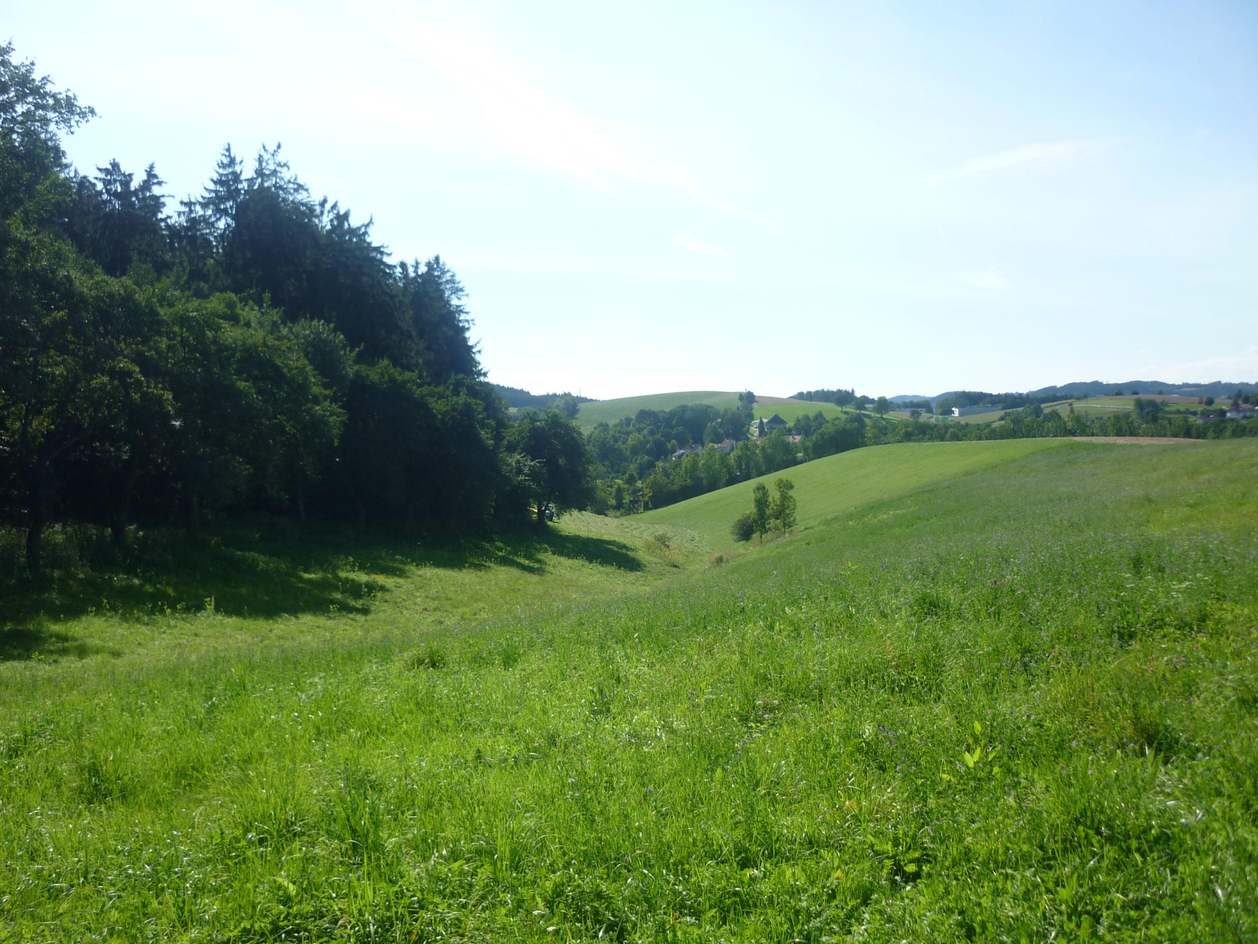 Wundersberg