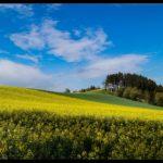 Aprilwochenende-Krenglbach-002