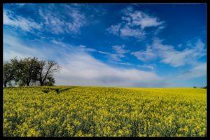 Aprilwochenende-Krenglbach-003