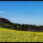 Aprilwochenende-Krenglbach-004