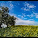 Aprilwochenende-Krenglbach-005
