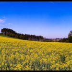Aprilwochenende-Krenglbach-006