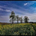 Aprilwochenende-Krenglbach-012