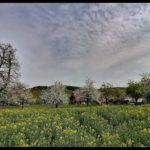 Aprilwochenende-Krenglbach-015