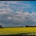 Aprilwochenende-Krenglbach-016