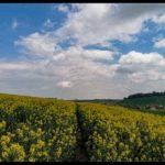 Aprilwochenende-Krenglbach-019