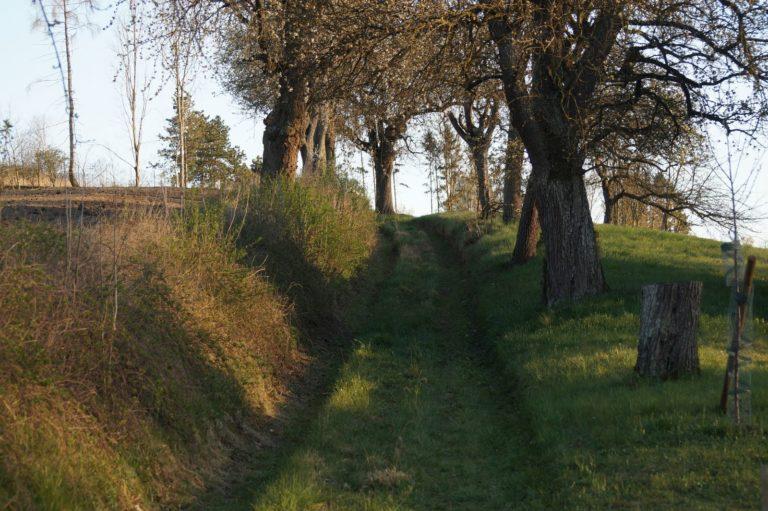 Karwoche in Krenglbach
