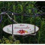 Blueten-und-Erntezeit-Krenglbach-Juli-2020-001