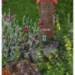 Blueten-und-Erntezeit-Krenglbach-Juli-2020-008