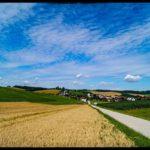 Blueten-und-Erntezeit-Krenglbach-Juli-2020-015