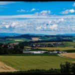 Blueten-und-Erntezeit-Krenglbach-Juli-2020-017