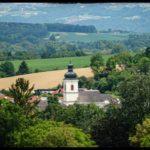 Blueten-und-Erntezeit-Krenglbach-Juli-2020-023