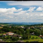 Blueten-und-Erntezeit-Krenglbach-Juli-2020-024