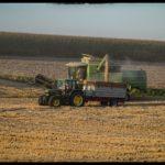 Weizenernte-Krenglbach-Juli-2020-008