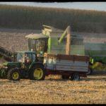 Weizenernte-Krenglbach-Juli-2020-009