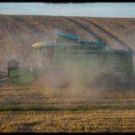 Weizenernte-Krenglbach-Juli-2020-011