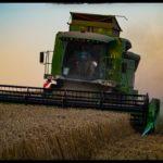 Weizenernte-Krenglbach-Juli-2020-014