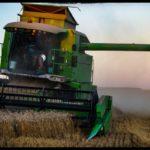 Weizenernte-Krenglbach-Juli-2020-015