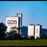 Kuerbiszeit-in-Krenglbach-2020-17