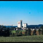 Kuerbiszeit-in-Krenglbach-2020-19