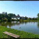Kuerbiszeit-in-Krenglbach-2020-37