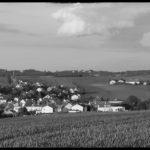 Kuerbiszeit-in-Krenglbach-2020-38