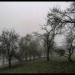 Dezember-in-Krenglbach-041