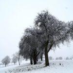 Erster-Schnee-2021-in-Krenglbach-006