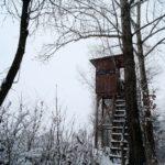 Erster-Schnee-2021-in-Krenglbach-010