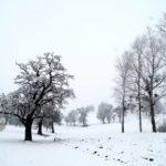 Erster-Schnee-2021-in-Krenglbach-022
