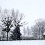 Erster-Schnee-2021-in-Krenglbach-024