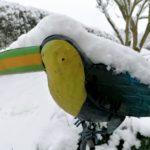 Erster-Schnee-2021-in-Krenglbach-033