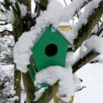 Erster-Schnee-2021-in-Krenglbach-034