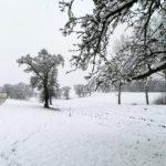 Erster-Schnee-2021-in-Krenglbach-045