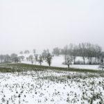 Erster-Schnee-2021-in-Krenglbach-046