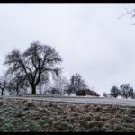 Rauhreif-am-Wundersberg-zu-Neujahr-007