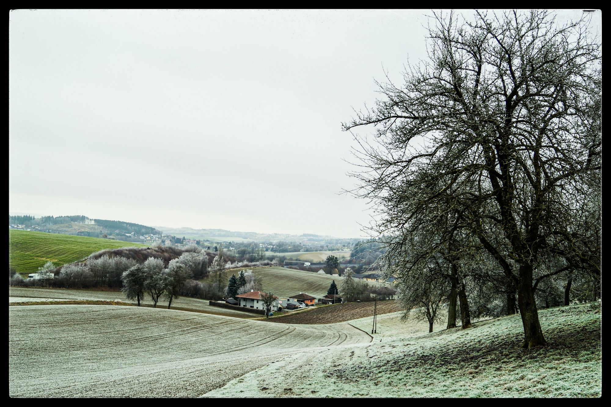 Rauhreif zu Neujahr am Wundersberg