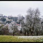 Rauhreif-am-Wundersberg-zu-Neujahr-016