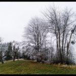 Rauhreif-am-Wundersberg-zu-Neujahr-019