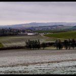 Rauhreif-am-Wundersberg-zu-Neujahr-023
