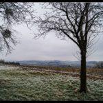 Rauhreif-am-Wundersberg-zu-Neujahr-025