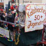 Krenglbacher-Faschingszug-2009-208