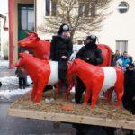 Krenglbacher-Faschingszug-2013-192