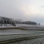 Fruehlingsbeginn-in-Krenglbach-20-03-2021-005