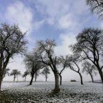 Fruehlingsbeginn-in-Krenglbach-20-03-2021-010