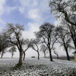 Fruehlingsbeginn-in-Krenglbach-20-03-2021-011