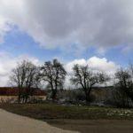 Fruehlingsbeginn-in-Krenglbach-20-03-2021-025