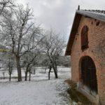 Fruehlingsbeginn-in-Krenglbach-20-03-2021-027