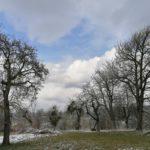 Fruehlingsbeginn-in-Krenglbach-20-03-2021-028