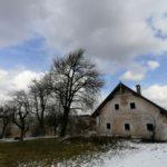 Fruehlingsbeginn-in-Krenglbach-20-03-2021-029